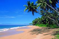 Отдых северный Гоа индия